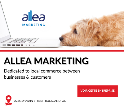 Entreprise locale allea marketing